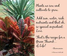 The Green Thumb of. by Charmaine Smith Ladd Shake Hands, Life Moments, Author, In This Moment, Green, Plants, Writers, Plant, Planets