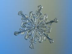 Snowflake n.2 13-Feb-2017 (Alexey Kljatov (ChaoticMind75)) Tags: snowflake real background nature photo snow abstract macro christmas unique detail frost microscopic crystal winter season natural seasonal closeup weather cold ice hexagonal symmetric structure light pattern shape symbol unusual rare detailed design fragile symmetrical geometric sparkling glittering water frozen december ornament amazing pretty frosted symmetry freeze magnified small chdk alexeykljatov chaoticmind75 fine…