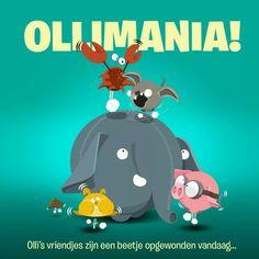 Ollimania