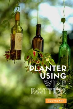 Have fun making a project like this Planter Using Upcycled Wine Bottles! Empty the bottle with friends, then feel the pride of creating a unique item! Glass Bottle Crafts, Wine Bottle Art, Glass Bottles, Wine Bottle Planter, Diy Planter Box, Garden Planters, Cutting Wine Bottles, Bottle Cutter, Nature Decor