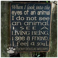 When I look into the eyes of an animal I do not see an animal. I see a living being, I see a friend, I feel a soul. ~ Anthony Douglas Williams ~