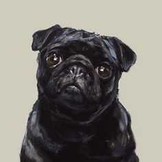 British artist Justine Osborne has a real flair for capturing pups in a fresh and contemporary style. This canvas oil painting of a sweet black pug encapsulates all the individual features we love about this breed. This pug is painted with a charming expression that's guaranteed to bring smiles to pug lovers everywhere. A striking piece that will brighten up any home, Justine's skilfully placed brush strokes and use of colour really bring this painted pup to life. This portrait makes a great…