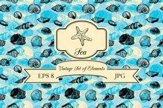 Seashells set by cat_arch_angel on Creative Market