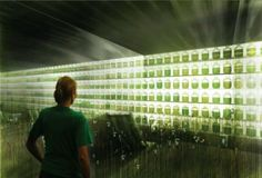 Algae Innovations: 13 Alternative Bio-Energy Concepts