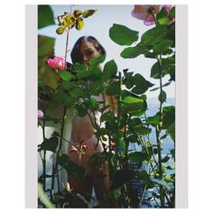 phonetically 'Envie de Mer' is a desire for the sea. We merge a mysterious and artistic quality with the ease and versatility of swimwear. Swimsuits, Bikinis, Swimwear, Mysterious, Plant Leaves, Sea, Artist, Nature, Pink