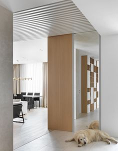 hallway Divider, House Design, Interior Design, House Styles, Room, Furniture, Home Decor, House, Nest Design