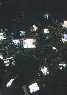 bustakay:  Tv Garden (1974) - Nam June Paik.                                                                                                                                                     More