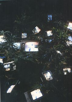 bustakay:  Tv Garden (1974) - Nam June Paik.