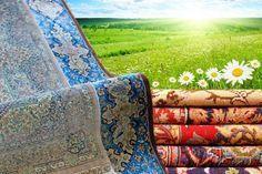 Έφτασε η εποχή του χρόνου για το καθαρισμότων χαλιών και των μοκετών. Για όλους εσάς που θα επιλέξετε να τα καθαρίσετε στο σπίτι, δείτε όσα πρέπει να γνωρ Picnic Blanket, Outdoor Blanket, Cleaners Homemade, Outdoor Furniture, Outdoor Decor, Rugs On Carpet, Carpets, Home Organization, Clean House