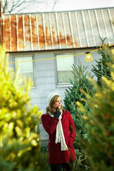 Tree Lot: Woman Trying To Decide on Perfect Tree by Sean Locke #christmas
