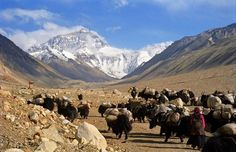 Mount Everest, Nepal / China Border travel-and-places