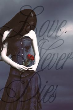 Love Never Dies ❤ -Fallen Series Fallen Saga, Fallen Novel, Fallen Series, Fallen Book, Fallen Angels, Series 3, Mummy Movie, New Movies Coming Out, Lauren Kate