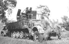 A abandoned SdKfz 7/1