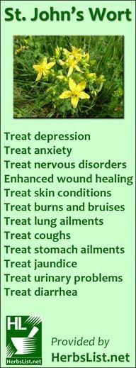 St. John's Wort benefits