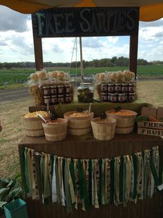 Farm birthday popcorn stand bar Ipop gourmet popcorn Tampa