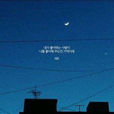 환상이얌 Korean Phrases, Korean Quotes, Korean Words, Pretty Words, Cool Words, Korean Writing, Neon Quotes, Typography, Lettering