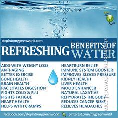 bdo how to make purified water