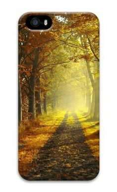 Autumn morning 3D Case shop iphone 5 case for Apple iPhone 5/5S Case for iphone 5S/iphone 5,http://www.amazon.com/dp/B00KF25RRE/ref=cm_sw_r_pi_dp_LwfGtb145PRC3TSE