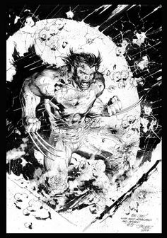 Wolverine by Jim Lee