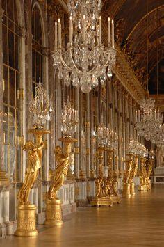 Grand old buildings and elaborate interiors fascinate me - Versailles - Hall of Mirrors