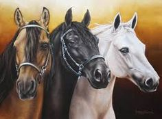 cuadros de caballos salvajes - Buscar con Google