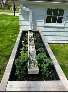 Garden Yard Ideas, Lawn And Garden, Garden Projects, Home And Garden, Indoor Water Garden, Cool Garden Ideas, New Build Garden Ideas, Garden Fun, Outdoor Projects
