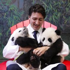Justin Trudeau with the two pandas he named Jia Panpan and Jia Yueyue