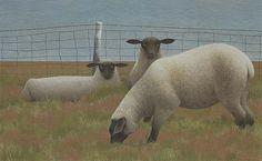 Three Sheep Alex Colville Canadian Artist