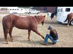 How to Improve Your Barrel Horse's Topline, Stride AND Times! | BarrelRacingTips.com