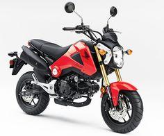 Ten Great Beginner Bikes: 2014 Honda Grom ($2,999)