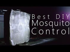How to Make The Best Mosquito Trap - Kill Thousands Every Night - YouTube
