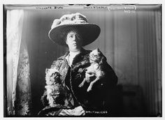 1908 with Brussels Griffon