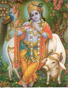 Lord Krishna with cow.