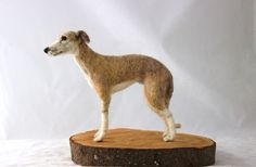 needle felted Whippet -Flynn | Flickr - Photo Sharing!