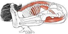 Kurmasana: Postura de la Tortuga