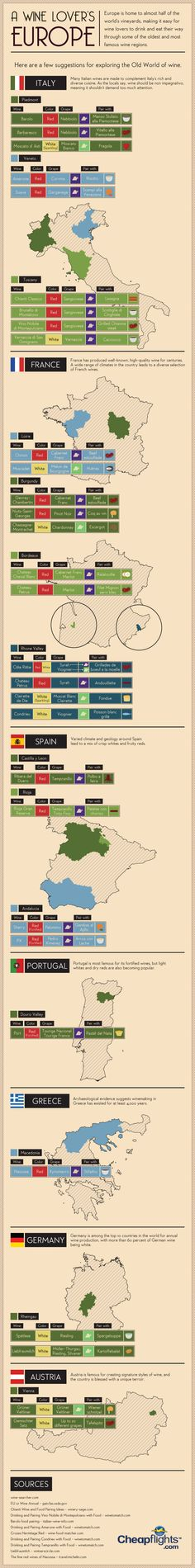 European Wine Guide : Are you that kind of person that can only accept the quality of European wine? Then you must read this infographic.  > http://infographicsmania.com/european-wine-guide/?utm_source=Pinterest&utm_medium=ZAKKAS&utm_campaign=SNAP