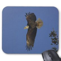 Flying Bald Eagle Wildlife-supporter Art Mouse Pad