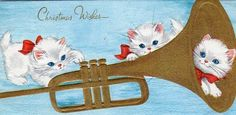 cats and trumpet