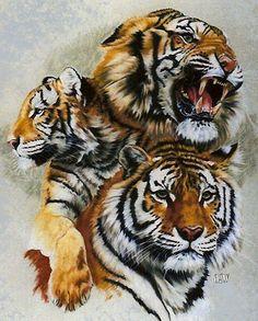 tiger 9c by agaricgreywolf on @DeviantArt