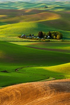 The Rolling Hills of the Palouse, Whitman County, Washington, USA Places To Travel, Places To See, Wonderful Places, Beautiful Places, Places Around The World, Around The Worlds, Toscana, Color Of Life, Beautiful World