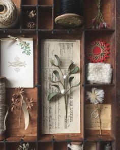 Letterpress drawers are actually very practical. Transform the wooden printers' trays into something new with our clever letterpress drawer ideas. Um Dia Desses, Letterpress Drawer, Printers Drawer, Diy Shadow Box, Witch Aesthetic, Mistletoe, Botanical Art, Box Art, Dried Flowers
