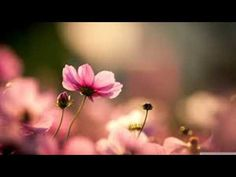 Abraham Hicks - Breaking patterns in relationships - YouTube