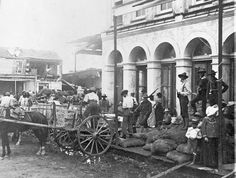 "Horse-drawn carts for food delivery that are being protected by armed guards outside the Commissary in Galveston following the great hurricane (aka ""Isaac's Storm"") in 1900. Simply an incredible historic shot. Can you imagine being one of the survivors of the storm? You'd emerge into an apocalyptic nightmare. 1900 Galveston Hurricane, Texas Hurricane, Galveston Island, Galveston Texas, Texas Coast, Texas History, Texas Homes, Natural Disasters, Texans"