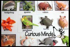 Montessori Animal Match - Miniature Animals with Matching Cards - 2 Part Cards.  Montessori learning toy, language materials - Dingo Animals