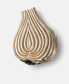 Onion - Delicious Jewels by Hemmerle - diamonds - silver - copper - white gold Jewelry Art, Fine Jewelry, Jewelry Design, Jewellery, Silver Jewelry, Wholesale Jewelry, Beautiful Earrings, White Gold, Bling