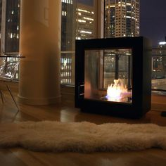 Peau d'ours & modern fireplace