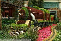 BY: www.facebook.com/NaturalezaYMundoAnimal/  Obras de arte con flores!  www.instagram.com/Naturalezaymundoanimal/ -- #junio #naturaleza #June #flores #flowers #art #arte #gardening #jardines #naturaleza