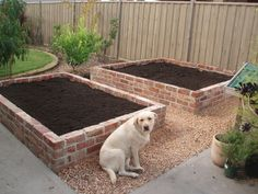 55 Simple Raised Garden Bed Ideas for Backyard Landscaping Yard Edging, Brick Edging, Building A Raised Garden, Raised Garden Beds, Raised Gardens, Raised Beds, Brick Planter, Brick Yard, Raised Flower Beds