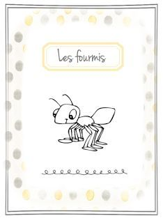 Dossier sur les fourmis + explications fourmilière en classe
