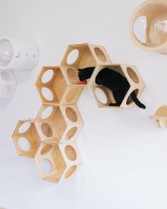Cat hexagon house Modern Cat Bed Wall Mounted Cat Bed Cat Wall Shelf Cat Shelf Cat Furniture Pet Supplies Luxury Cat Bed Cat tree - Animals and Pet Supplies Modern Cat Furniture, Tree Furniture, Gerbil, Hexagon House, Luxury Dog Kennels, Cat Wall Shelves, Cat Hotel, Animal Gato, Cat Hammock